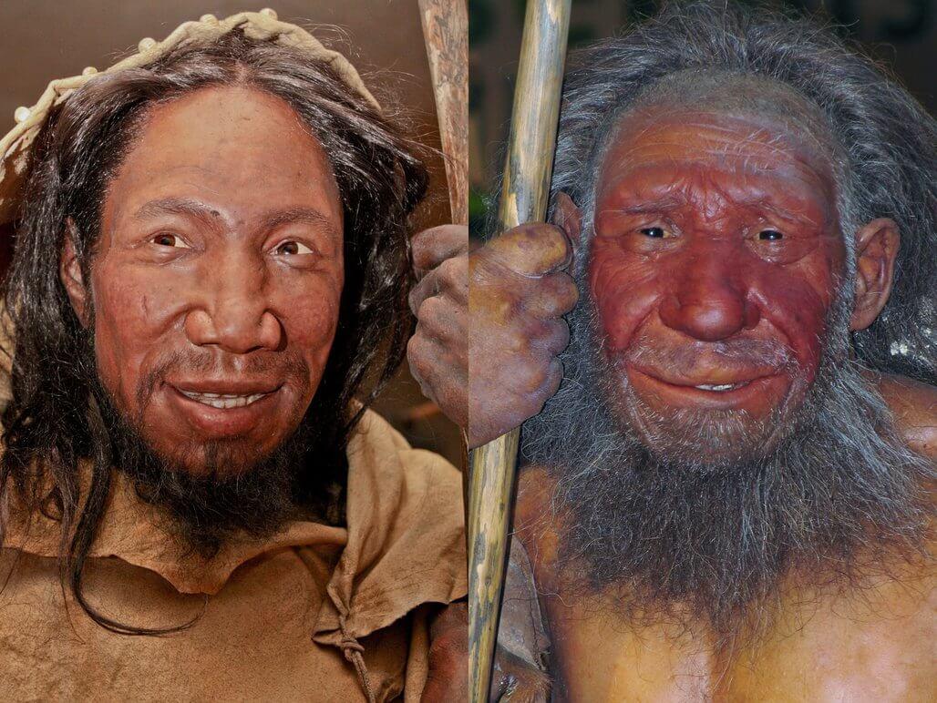 Homo sapiens y Neandertal