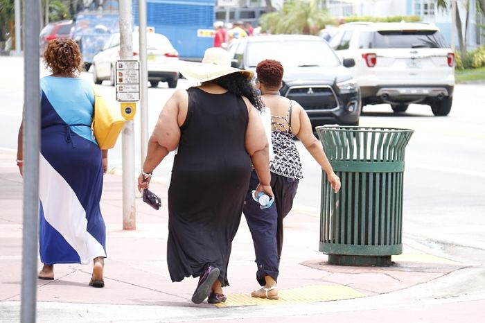 cura para la obesidad