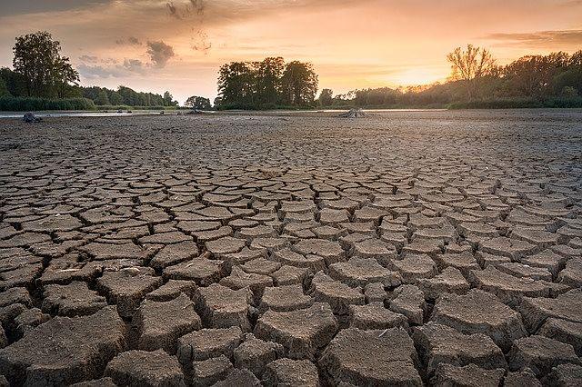 ecosistemas desaparecidos deteriorados